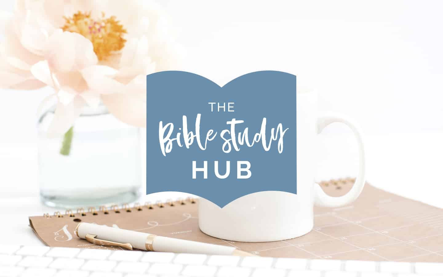 online bible study for women