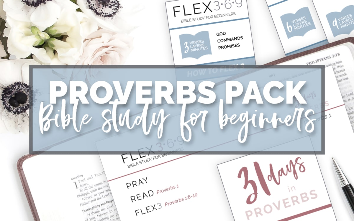 proverbs bible study