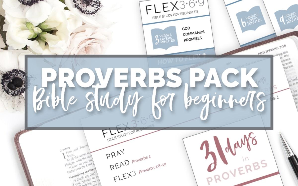 proverbs bible study